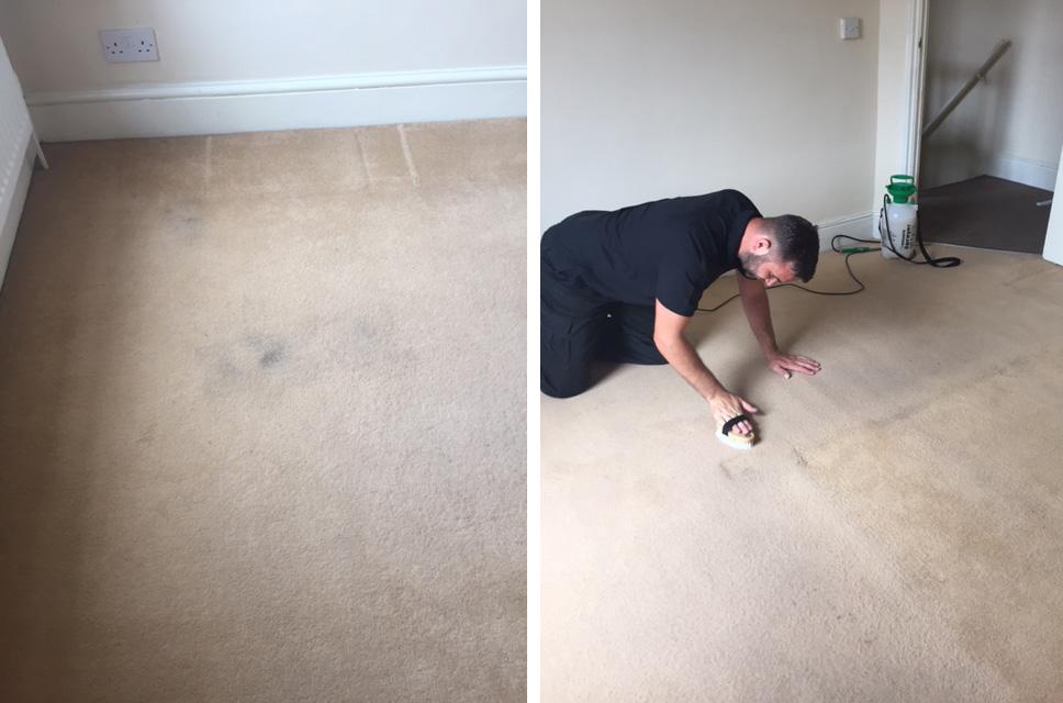 Carpet cleaning MK